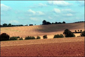 Ploughed fields BBC