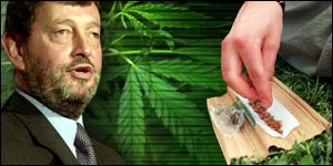 David Blunkett and cannabis graphics