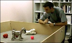 Teaching Aibo to recognise words and objects, Sony
