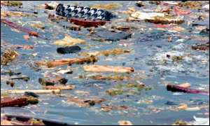 Debris from the crash floats on the sea off the Nova Scotia coast
