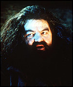 Coltrane as Hagrid