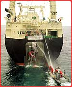 Greenpeace protest against whaling in Japan