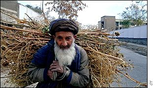 A man carries wood in Kabul