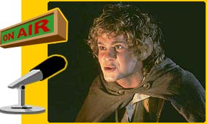 Put your questions to Merry the hobbit!