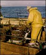 Crewman on trawler deck   BBC