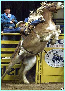 during the 43rd Annual Wrangler National Finals Rodeo in Las Vegas