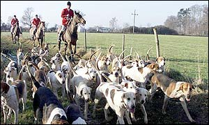 A hunt in Sussex