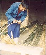 Cutting bamboo canes