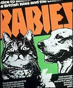 Thesis about rabies disease