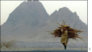 A boy carries firewood, with mountains behind him