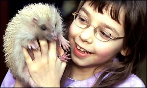 Bryony Hall with Alfie the hedgehog