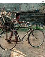 Boy with firewood on trishaw