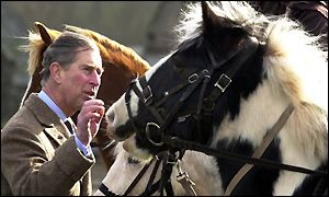 Prince of Wales at Cantref Riding Centre