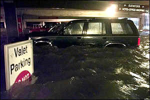 [ image: Waist high water in a car park in Mobile]