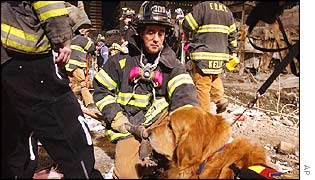 A fire-fighter kneels to pet Nikie