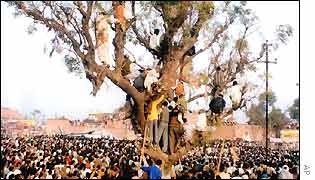Supporters of Uttar Pradesh Chief Minister, Rajnath Singh, climb a tree to have a glimpse of their leader