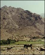 Yemen mountains