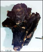 Customs & Excise handout photo of a smoked juvenile Tantalus monkey