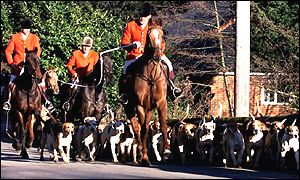 One of the 184 hunts in England and Wales