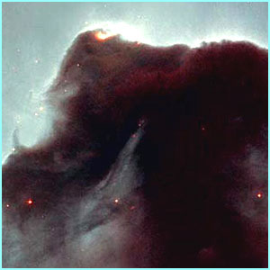 The Horsehead nebula, a cold, dark cloud of gas and dust in the constellation of Orion where thousands of stars are born