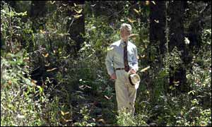 The Prince of Wales at the Monarch Butterfly Reserve