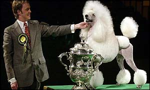 Handler Michael Nilson with Crufts Best In Show 2002 Nord Champion Topscore Contradiction