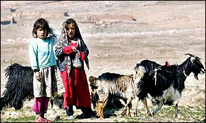 Afghan girls tend farm animals