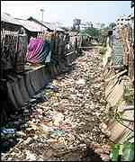 Rubbish-filled ditch    Abir Abdullah