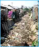 Rubbish in the slums