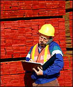 Man in lumber yard