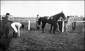 The Queen Mother's horse Devon Loch after the 1956 Grand National