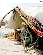 A Pashtun elder evicted from the north in a camp in southern Afghanistan