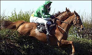 Bindaree clears a fence en route to victory in the Grand National