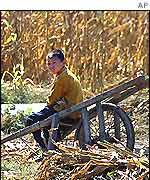 Chinese rural worker