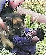A policeman and his dog attack a suspected illegal immigrant in 1998