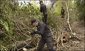 Police searching in undergrowth