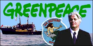 One of Greenpeace's founders, Captain Paul Watson, the subject of a new film, says the organisation has lost its way
