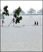 Flood in Orissa