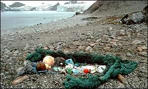 Marine debris on beach, BAS