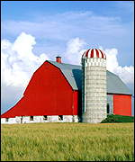 US barn and silo