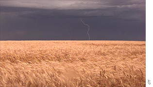 A storm moves through a western Kansas wheat field near the town of Montezuma.