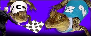 Sports betting website Blue Square is to hold a seres of alligator races for charity