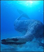 The mighty Basilosaurus, a carnivorous early whale (BBC)