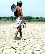 Haryana farmer walks across his parched land