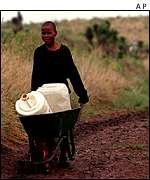 Boy with water barrels in wheelbarrow    AP