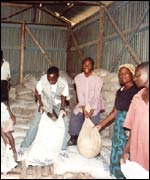Handling bags of maize