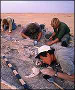 [ image: Lead palaeontologist Paul Sereno and his team in Africa]