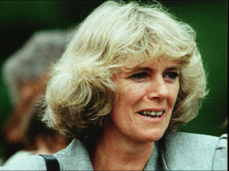 http://news.bbc.co.uk/olmedia/210000/images/_214530_camilla.jpg