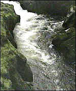 [ image: The Strid is a treacherous part of the River Wharfe]