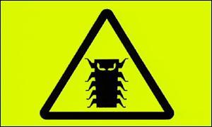 Millenium Bug